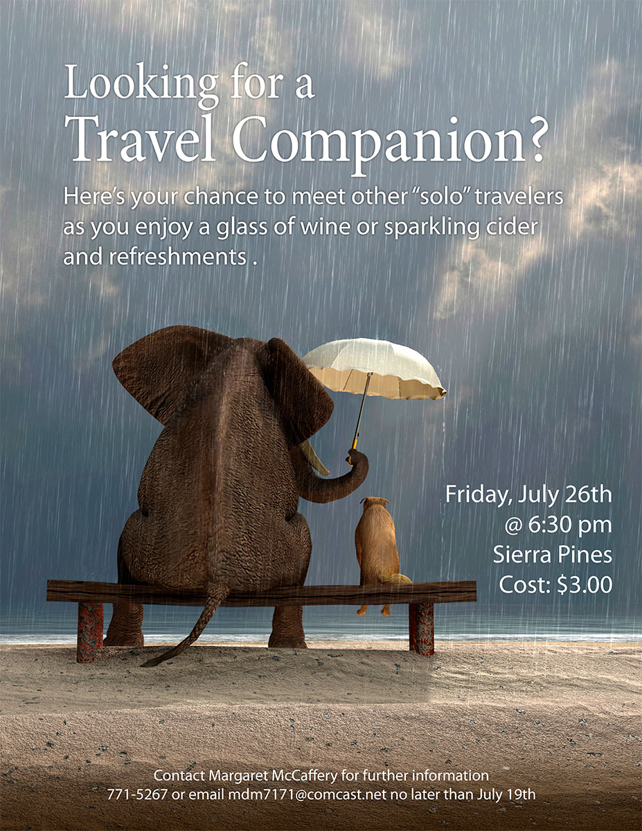 Travel Companion Poster